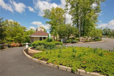 Suffern Single Family Home For Sale: 4 Arapaho Court