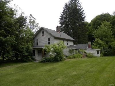 Patterson Single Family Home For Sale: 37 Route 164