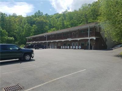 Commercial For Sale: 533 Route 52 #2