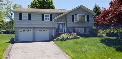 Cornwall Single Family Home For Sale: 110 Byron Court
