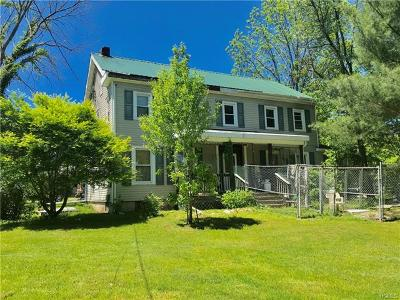 Dutchess County, Orange County, Sullivan County, Ulster County Single Family Home For Sale: 345 Drexel Drive