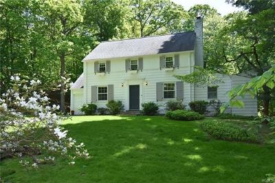 Dobbs Ferry Single Family Home For Sale: 243 Judson Avenue