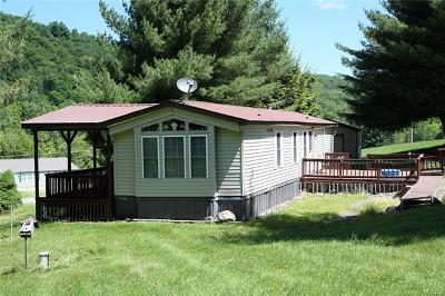 Fremont Center NY Single Family Home For Sale: $89,000