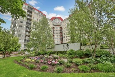 White Plains Condo/Townhouse For Sale: 10 Stewart Place #7EE