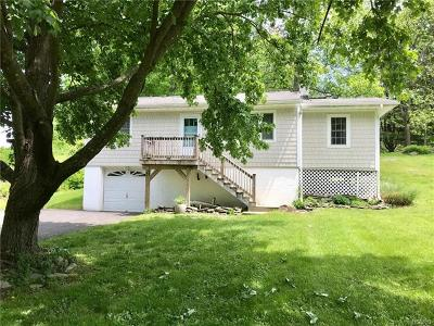 Staatsburg Single Family Home For Sale: 229 Mills Cross Road