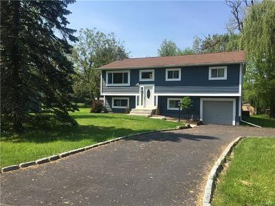 Washingtonville Single Family Home For Sale: 3 Decker Drive