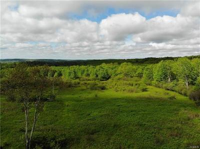 Swan Lake Residential Lots & Land For Sale: 176 Menderis Road