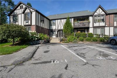 Westchester County Condo/Townhouse For Sale: 16 Manville Lane #6