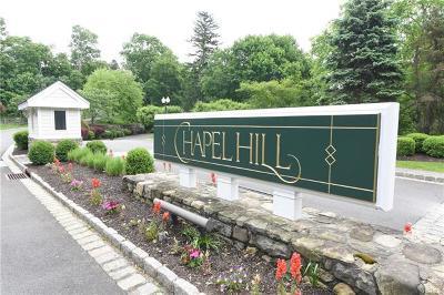 Peekskill Condo/Townhouse For Sale: 141 Underhill Lane