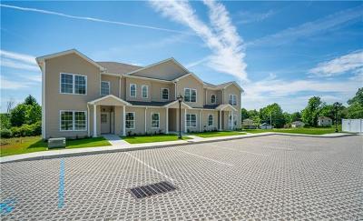 Carmel Condo/Townhouse For Sale: 2201 Pankin (87 Seminary Hill Rd) Drive