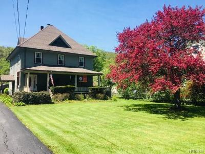 Roscoe Single Family Home For Sale: 91 Rockland Road