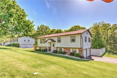 Rockland County Single Family Home For Sale: 56 Riverglen Drive
