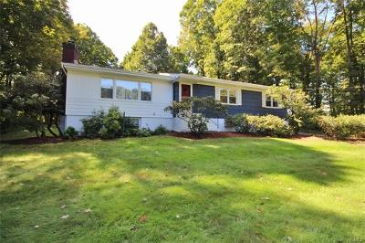 Westchester County Single Family Home For Sale: 6 Ichabod Lane