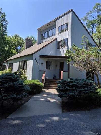 Single Family Home For Sale: 3238 State Route 207
