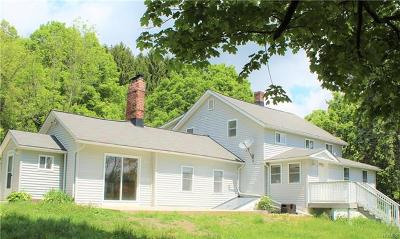 Multi Family 2-4 For Sale: 1399 Mountain Road