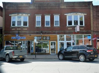 Commercial For Sale: 49 Stewart Avenue