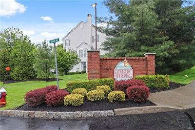 Rockland County Condo/Townhouse For Sale: 155 Meadow Lane