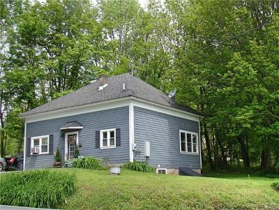 Youngsville, Jeffersonville, Callicoon Single Family Home For Sale: 796 County Route 164