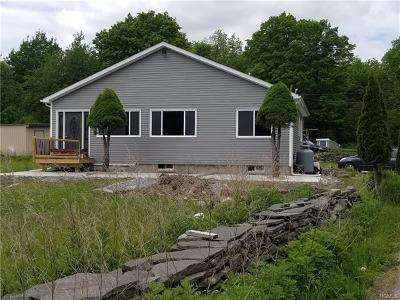 Wurtsboro Single Family Home For Sale: 2679 State Route 209