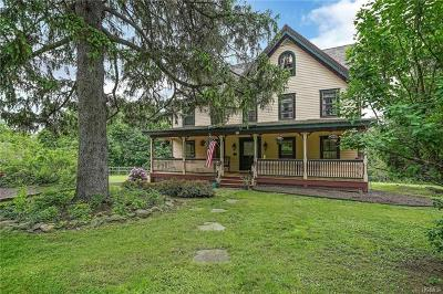 Mountainville Single Family Home For Sale: 80 Taylor Road