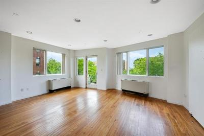 Brooklyn Condo/Townhouse For Sale: 702 Ocean Parkway #4R