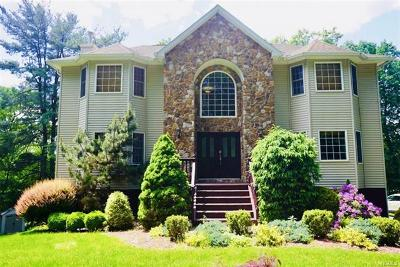 Single Family Home For Sale: 105 Hempstead Road