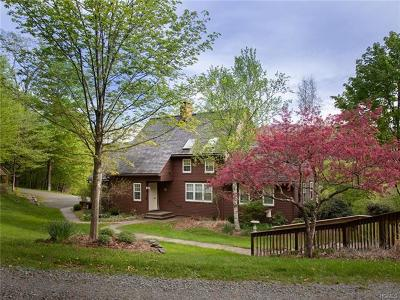 Livingston Manor NY Single Family Home For Sale: $850,000