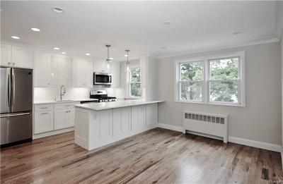 Westchester County Condo/Townhouse For Sale: 36 North Ridge Street #B
