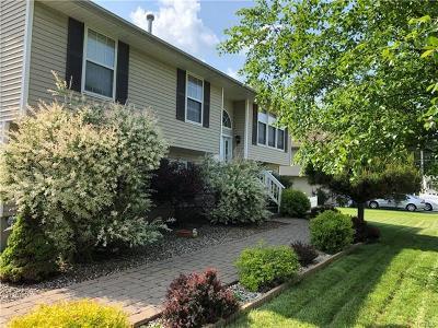 Washingtonville Single Family Home For Sale: 11 Bernadette Way