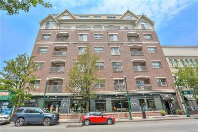 New Rochelle Condo/Townhouse For Sale: 543 Main Street #609