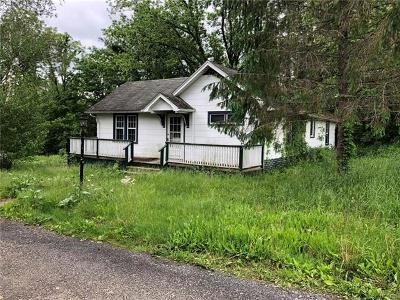 Pine Bush Single Family Home For Sale: 1148 Burlingham Road