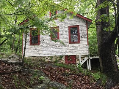 Westchester County Single Family Home For Sale: 46 Laurel Road