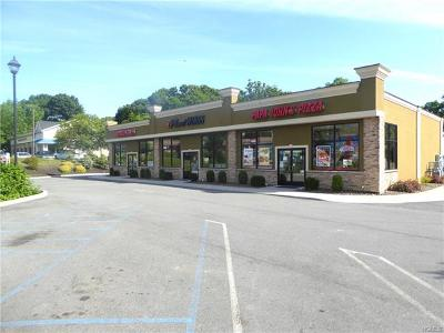Newburgh Commercial For Sale: 60 North Plank Road