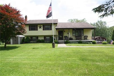 Middletown Single Family Home For Sale: 981 Greenville Turnpike