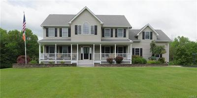 Single Family Home For Sale: 165 County Route 22