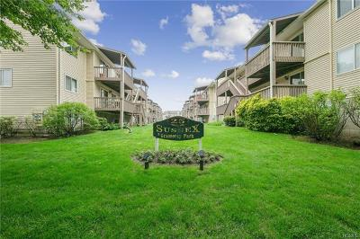 Nanuet Condo/Townhouse For Sale: 25 College Avenue #102