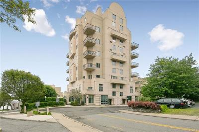 Nyack Condo/Townhouse For Sale: 3 Main Street #203