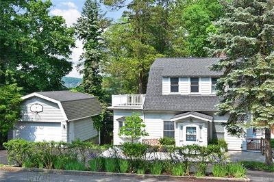 Dobbs Ferry Single Family Home For Sale: 93 Buena Vista Drive