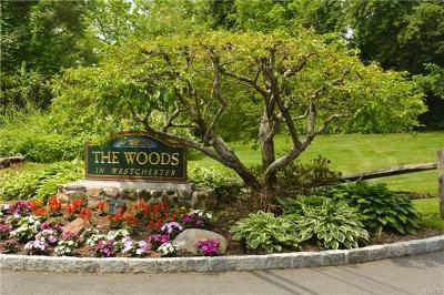 Ossining Condo/Townhouse For Sale: 34 Brooke Hollow Court