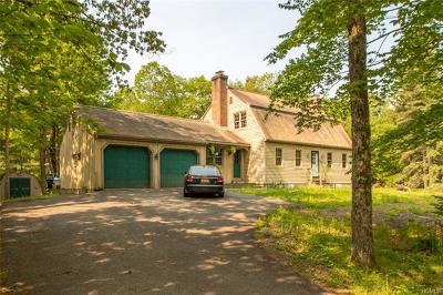 Cragsmoor Single Family Home For Sale: 93 Dellenbaugh Road