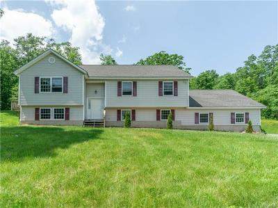 Bloomingburg Single Family Home For Sale: 275 Roosa Gap Road