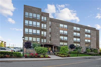 Sleepy Hollow Condo/Townhouse For Sale: 11 River Street #403