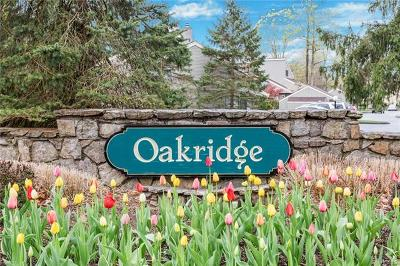 Westchester County Condo/Townhouse For Sale: 200 Lakeside Drive