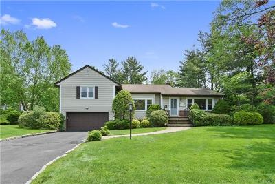 Rye Brook Single Family Home For Sale: 17 Elm Hill Drive