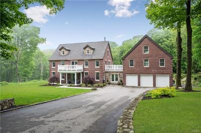 Dutchess County Single Family Home For Sale: 16 North White Rock Road