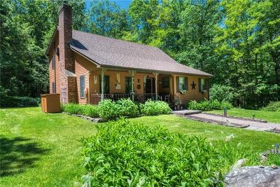 Pine Bush Single Family Home For Sale: 1530 Indian Springs Road