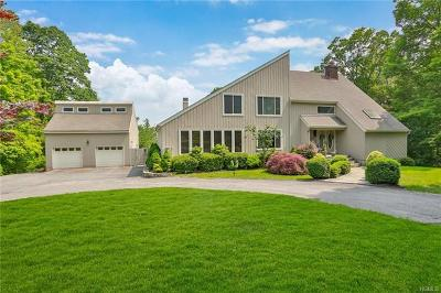 Westchester County Single Family Home For Sale: 22 Cat Rocks Drive