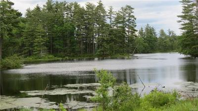 Residential Lots & Land For Sale: Lot #15 Swamp Pond Road