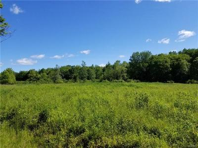 Swan Lake Residential Lots & Land For Sale: ** Mount Hope Road