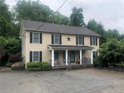 Putnam County Multi Family 2-4 For Sale: 3 Healy Road